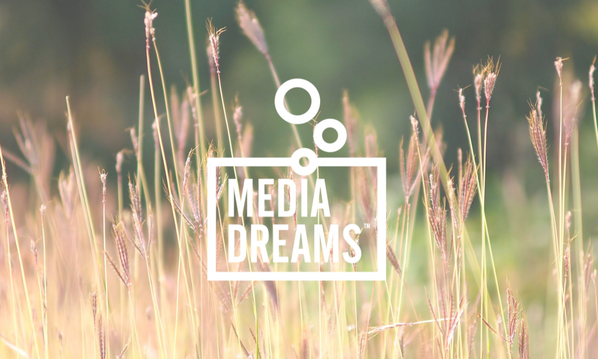MEDIA DREAMS | The Creative Content & Storytelling Agency